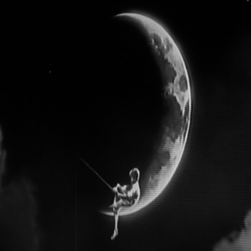 Moonbeam Hustle