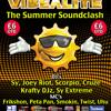 DJ Cruze & MC Smokin' live @Vibealite Summer Soundclash 1.7.2011 (FREE DOWNLOAD))