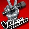 Alejandro Sanz y Mario Domm - la voz mexico