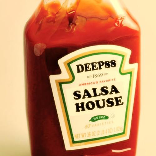 Deep88 - Salsa House extended