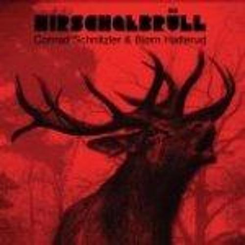 Lasse Marhaug: Schnitzler / Hatterud Remix