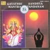 SandhyaVandhanam - Upanyasam by Shri Krishna Premi
