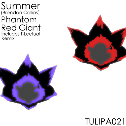 Summer | Phantom (T.Lectual's Scams & Scandals Mix) | Tulipa OUT NOW