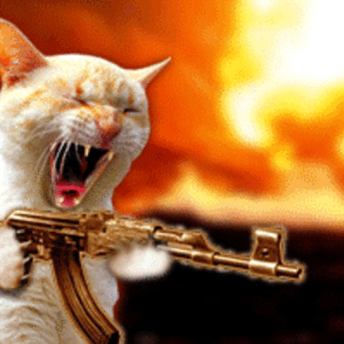 Angry Cat (Free Download)