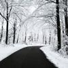 kara winter magic-X'mas Ver