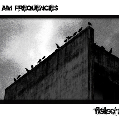 AM Frequencies - 10 - Suspicion