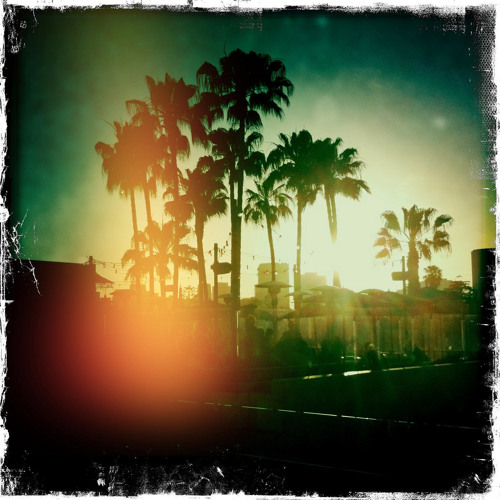 Louis La Roche - Los Angeles