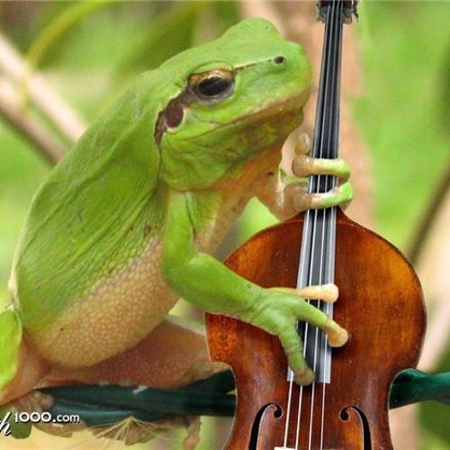 Dj Frogg - Louis Armstrong&Duke Ellington vs Missy Elliot vs A.Skillz - I Don't Mean a Mash