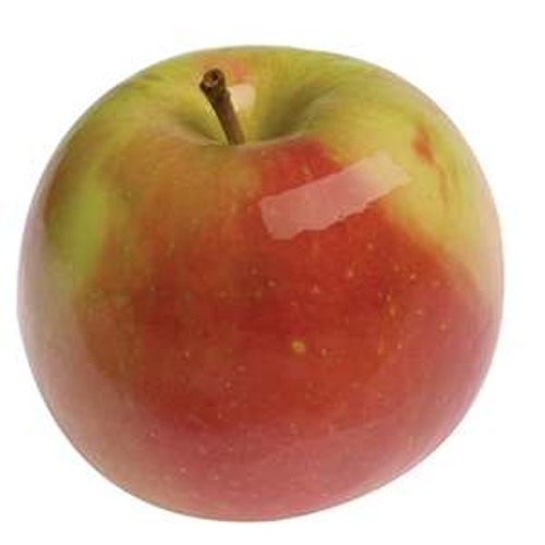 The real  apple