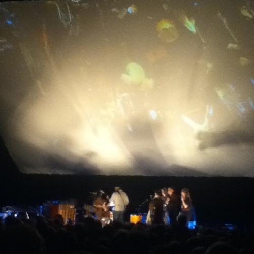 Feist - I Feel it All (Live at Tempodrom Berlin)