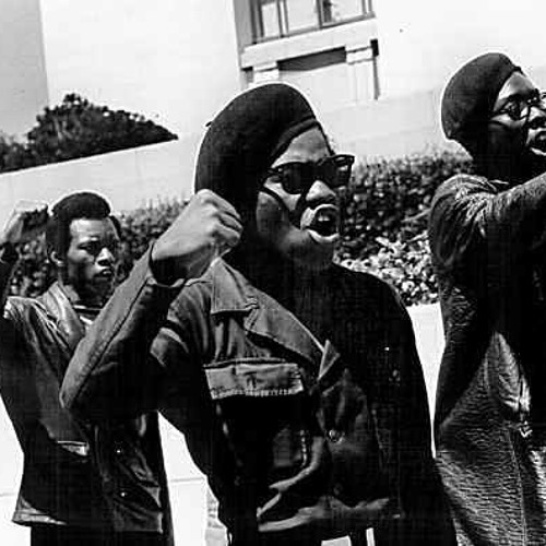 Sweet and Sour - The Black Panthers Revolution
