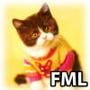 deadmau5 - FML (stevehero Vocal Edit)