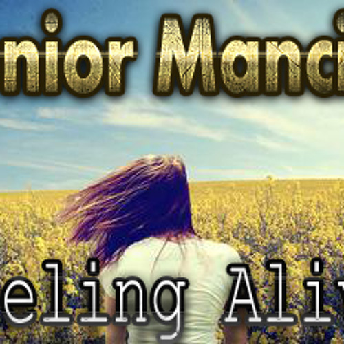 Junior Mancini - Feeling Alive (Original Mix)