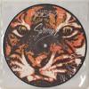 Survivor - Eye Of Tiger (Slicer Edit)***NEW LINK***