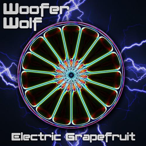 Ghostface Killah - Holla (Woofer Wolf Remix)
