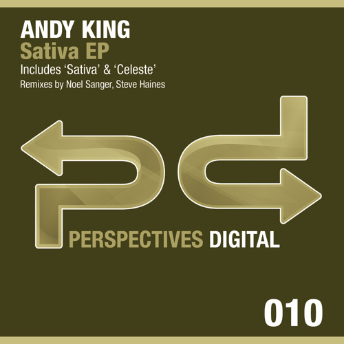 Andy King - Celeste (Steve Haines Remix) [Perspectives Digital]