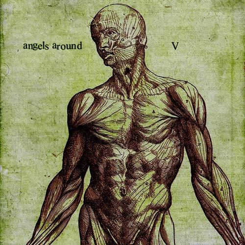 Angels Around - V