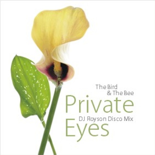 The Bird & The Bee - Private Eyes (DJRoyson Disco Mix)