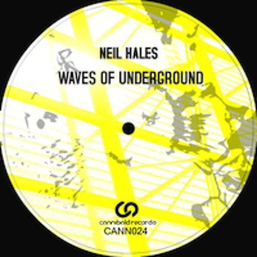 Neil Hales - Azid - Cannibald Preview