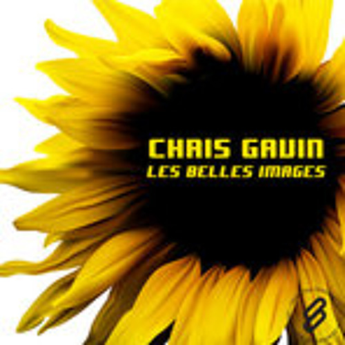 Chris Gavin - Les belles images (live interpretation remix)