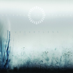 Animals as Leaders - To Lead You To An Overwhelming Question