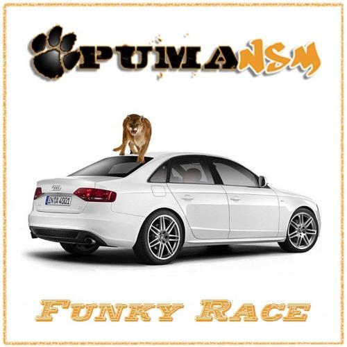 PumaNSM Funky Race (Concours de Mix 06 Funkysize 2011)