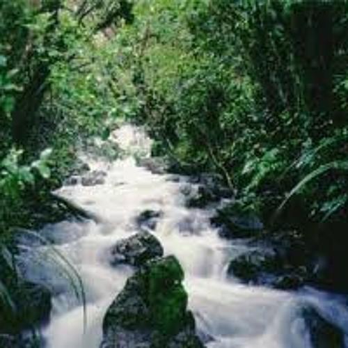 HornsValder-The Elixer that flows through the Earth's Lifestream