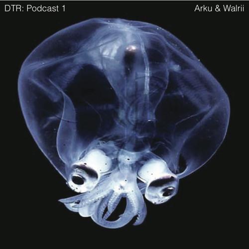 DTR: Podcast 01 Arku & Walrii