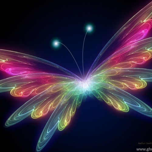 Eric Mendosa - Butterfly