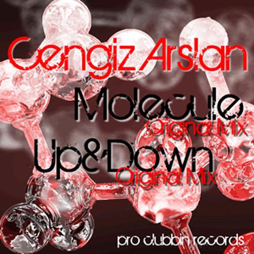 Cengiz Arslan - Up & Down (Original Mix)