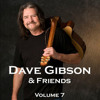 Dave Gibson - Wrong Kind Of Strong