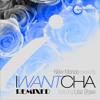 New Mondo ft. Lisa Shaw - I Want Cha 'Remixed' (Transport Recordings)