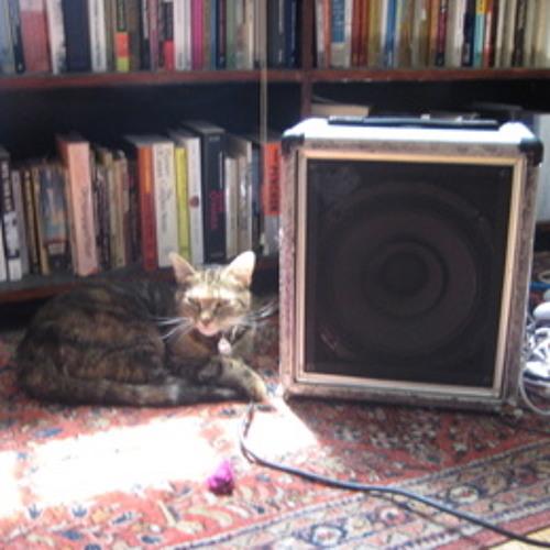 Our Cat (Nov 3, 2011)