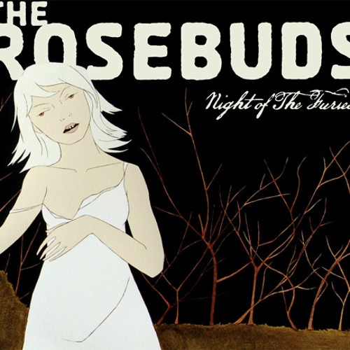 The Rosebuds - My Punishment for Fighting