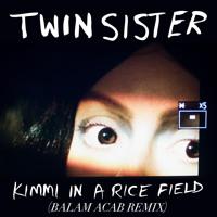 Mr Twin Sister - Kimmi in a Rice Field (Balam Acab Remix)