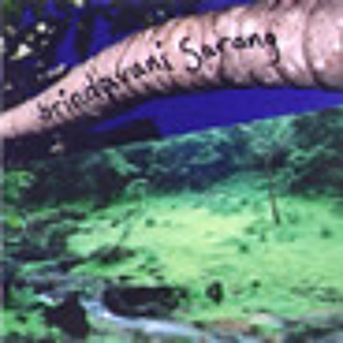 Brindivani Sarang - Duhn (in Keherwa) - from CAT-6 - s/t 2006
