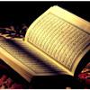 Quran - Abdul Rahman Alsudais - Surah003 (www.aswatalislam.net)