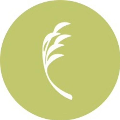 Tech Leaf- dreamAwaken  [www.degrainrecords.com]
