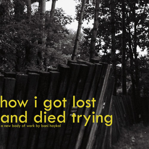 how i got lost and died trying was a conscious decision, serious.