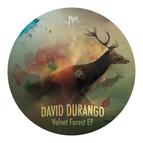 DI02 : David Durango - Velvet Forest (Mandy Jordan's Detroit remix)