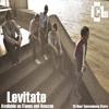 IC1s - Levitate