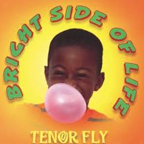 Tenor Fly - Bright Side Of Life (Dj Twister Remix)