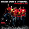 Gregor Salto and Mokoomba - Welele (Original Mix)