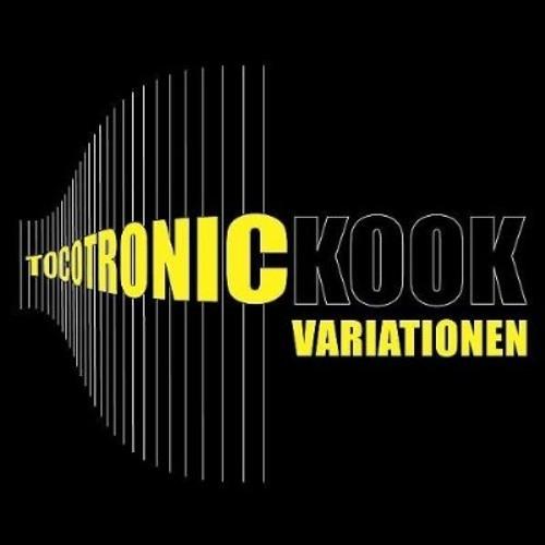 "2000: Tocotronic - ""Freiburg V3.0 (Tococrazy Miss Kittin & The Hacker remix)"""