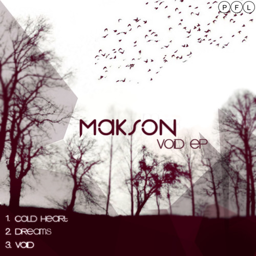 Makson - Void web edit