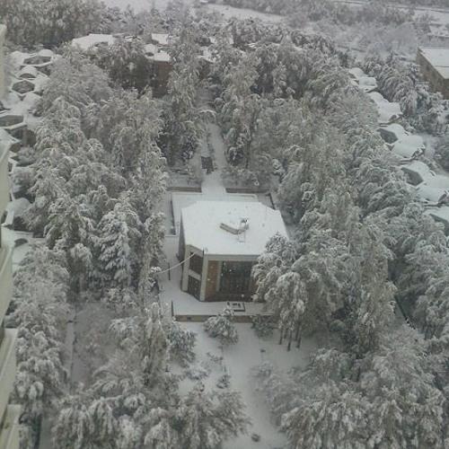 احمد شاملو - برف نو سلام