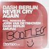 Dash Berlin - Never Cry Again (Evolutionize Bootleg) *FREE DOWNLOAD*