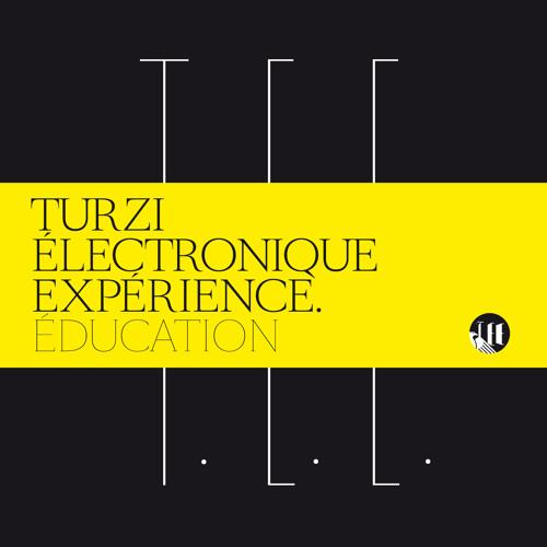 Turzi Electronique Expérience - En France