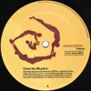 Ron Trent - I Feel The Rhythm (Inner Experience Revision)