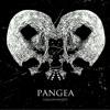 Pangea - Glass Casket